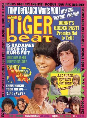 Tiger Beat teen magazine