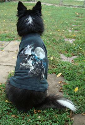 wolf howling t shirt