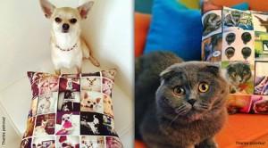 Pet Memorial Pillow