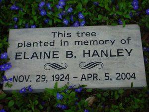 tree dedication marker stone