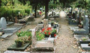 Paris Dog Cemetery