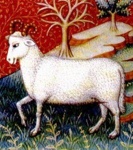 aries ram astrology zodiac