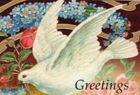 vintage dove postcard