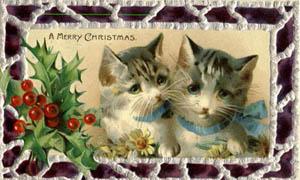 kitten chrismtas postcard