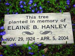 tree memorial stone